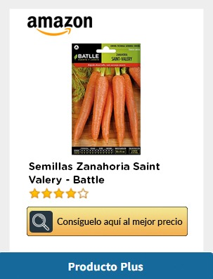 Semillas zanahoria en amazon