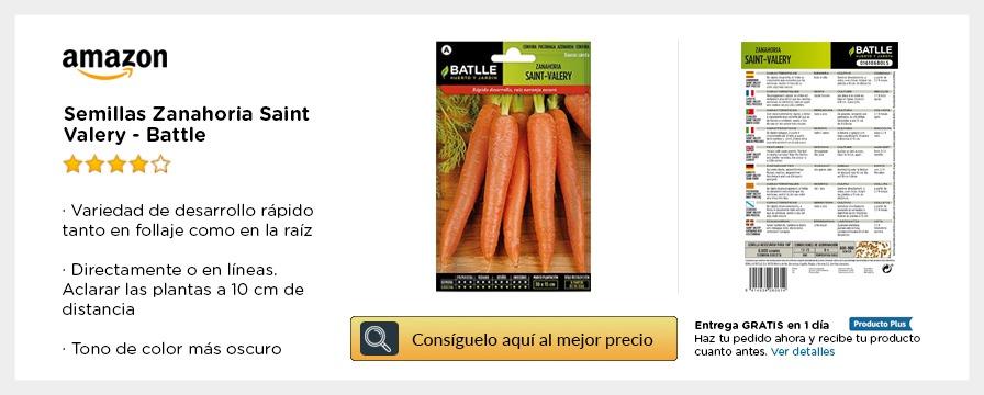 Semillas de Zanahoria para plantar en tu huerto urbano