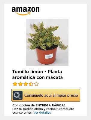 Tomillo macera planta aromatica movil amazon