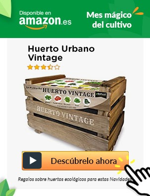 movil huerto urbano vintage