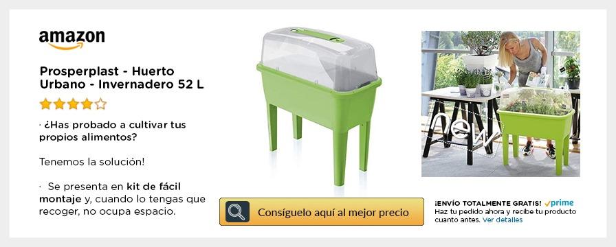 miniinvernadero plastico